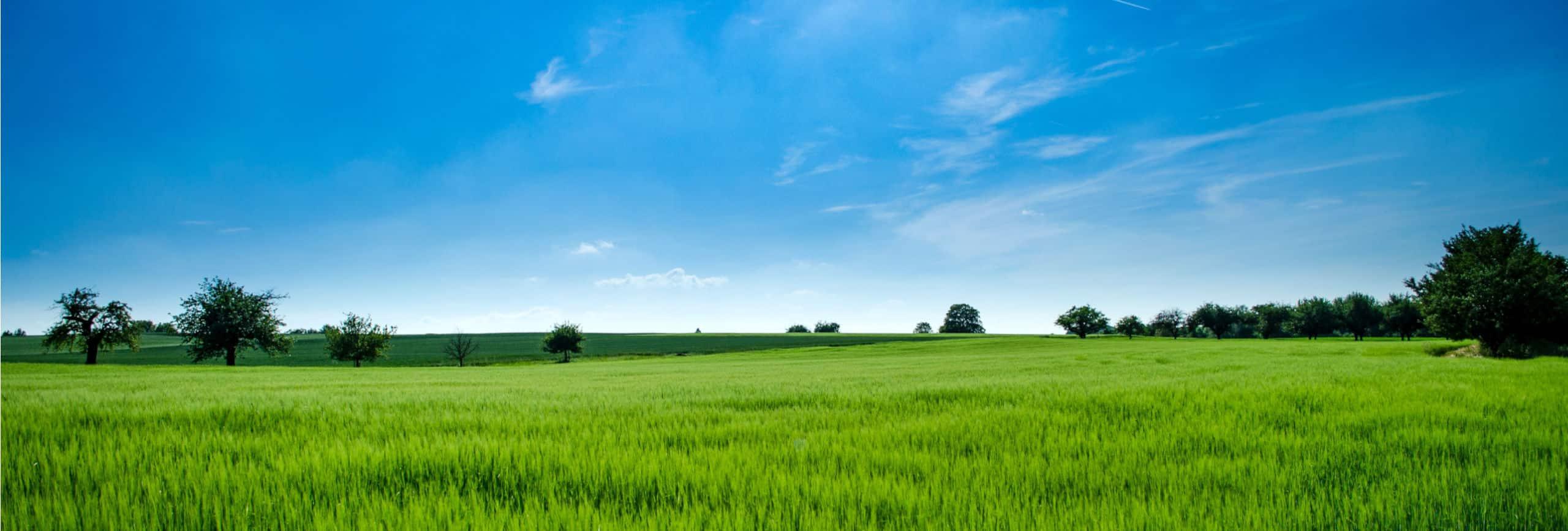 isr-haan-umwelt-und-landschaftsplanung